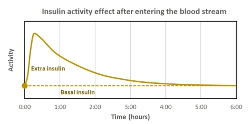 Insulin activity